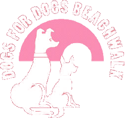 Dogs for Dogs Beachwalk